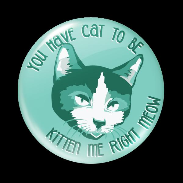 cat2bekitten